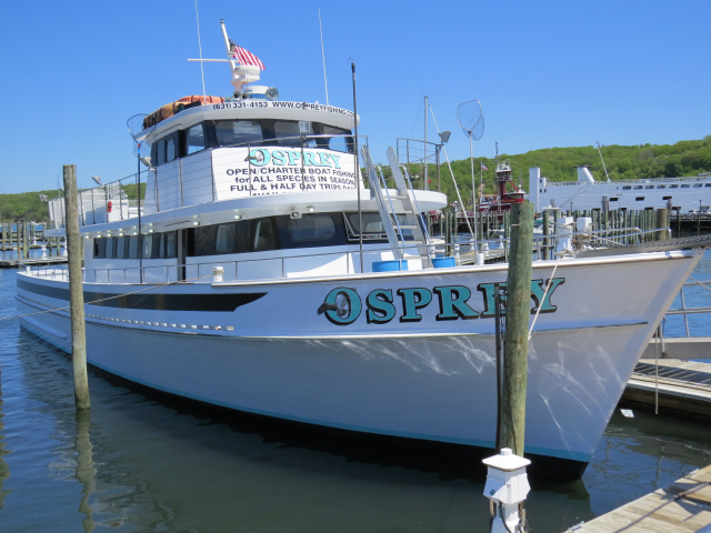 Welcome to the osprey fishing fleet long island ny for Port jefferson fishing
